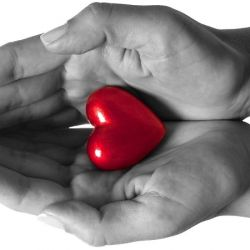 Сердце, сосуды, давление (18)
