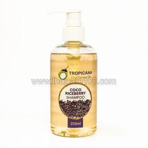Кокосовый шампунь для волос с черным рисом Tropicana Coco Riceberry Shampoo