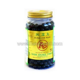 Snake capsules Ya Fung Zhi Wan for the treatment of the musculoskeletal system